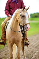 Clanton Performance Horses Sept 2016
